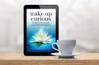 Wake Up Curious Kindle Edition